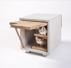 'Catify Your Home' Concrete Cat Condo Standard Architecture  Design